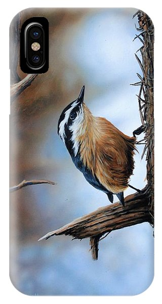 Hangin Out - Nuthatch IPhone Case