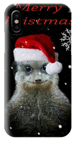 Meerkat iPhone Case - Happy Christmas by Paul Neville