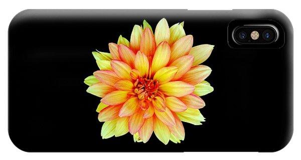 Happy Dahlia IPhone Case