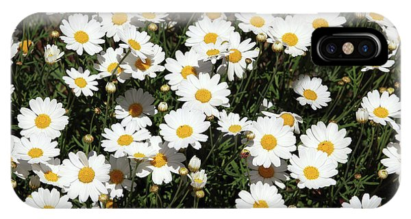 Floral iPhone Case - Happy Daisies- Photography By Linda Woods by Linda Woods