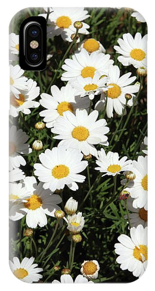 Daisy iPhone Case - Happy Daisies- Photography By Linda Woods by Linda Woods