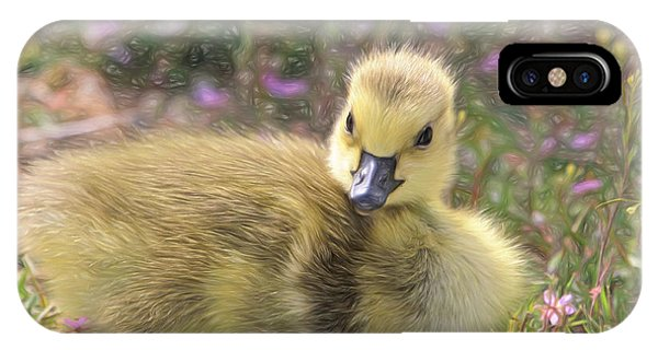 Goslings iPhone Case - Happy Easter To You by Donna Kennedy