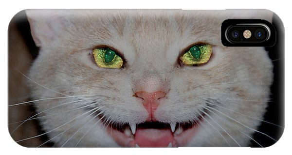 Happy For Spring Cat IPhone Case