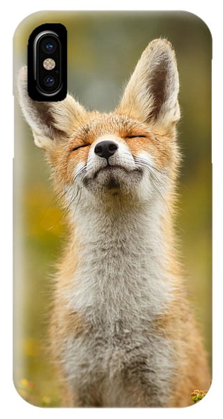 Niagra Falls iPhone Case - Happy Fox by Roeselien Raimond