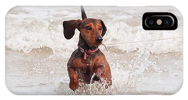 Happy Surf Dog IPhone Case