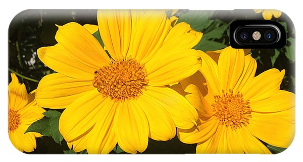 Happy Yellow IPhone Case