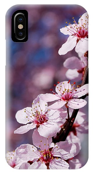 #happyfirstdayofspring IPhone Case
