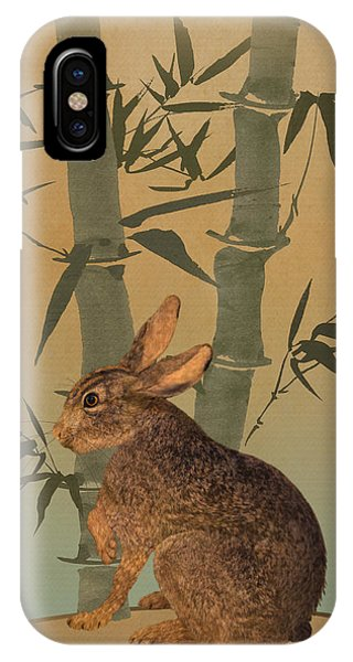 Hare Under Bamboo Tree IPhone Case