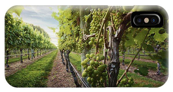 Harmony Vineyard Stony Brook New York IPhone Case