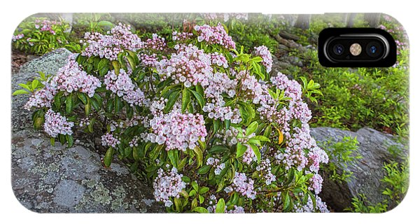 Harriman Pink And White Mountain Laurel IPhone Case