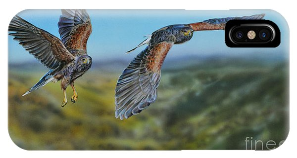 Harris's Hawks IPhone Case
