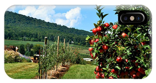 Harvest Time In The Catoctin Mountains IPhone Case