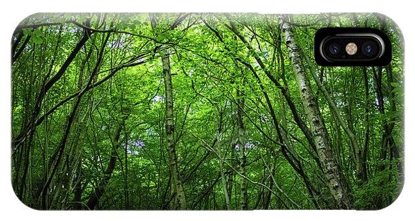 Hatfield Forest IPhone Case