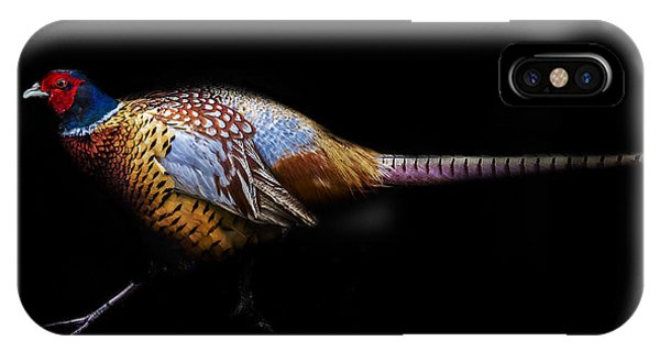 Have A Pheasant Day.. IPhone Case
