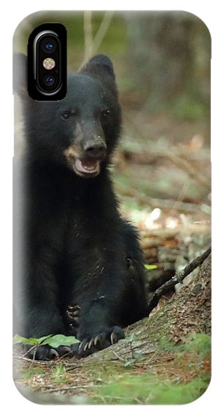Have You Seen My Mother IPhone Case
