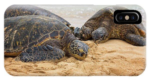 Oahu Hawaii iPhone Case - Hawaiian Green Sea Turtles 1 - Oahu Hawaii by Brian Harig