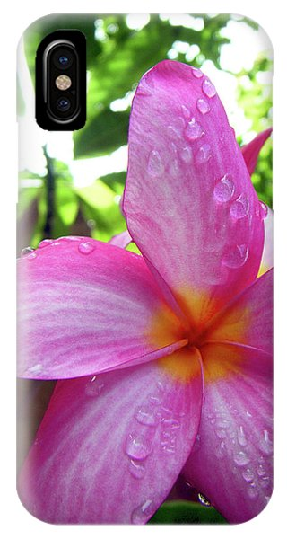 Hawaiian Plumeria IPhone Case