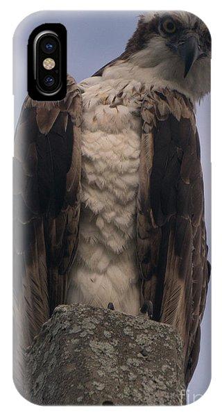 Hawk Attitude IPhone Case
