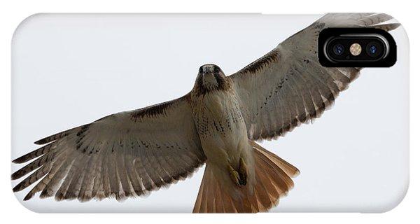Hawk Overhead IPhone Case