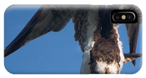 Hawk Prepares For Flight IPhone Case