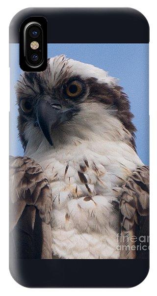 Hawk Profile IPhone Case