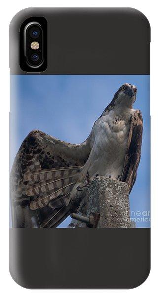 Hawk Stretching IPhone Case
