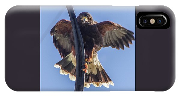 Hawk Watch 6 IPhone Case