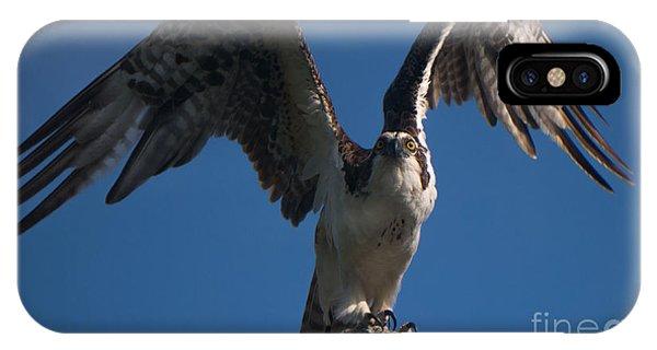 Hawk Wings IPhone Case
