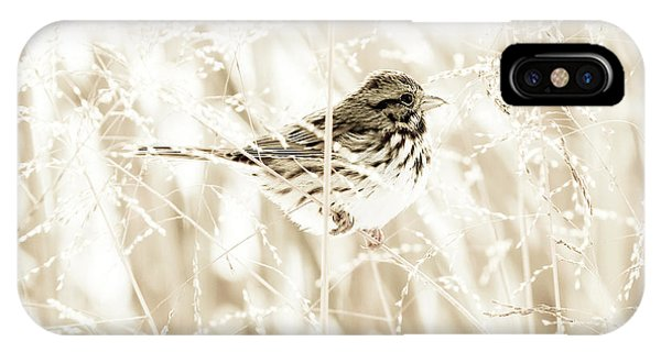 He Feeds The Sparrows IPhone Case