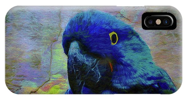 Macaw iPhone Case - He Just Cracks Me Up by Jan Amiss Photography