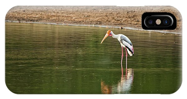 The Painted Stork  Mycteria Leucocephala  IPhone Case