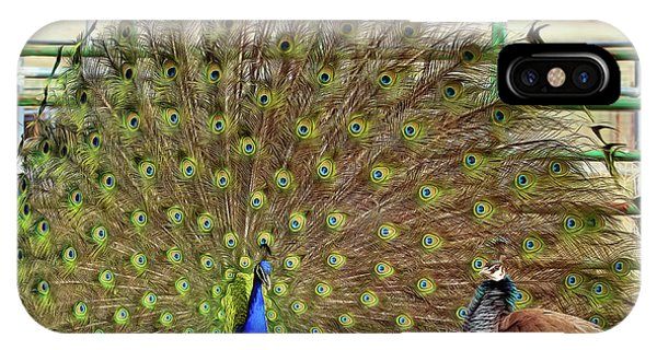 Peafowl iPhone Case - He Thinks I'm Impressed by Donna Kennedy