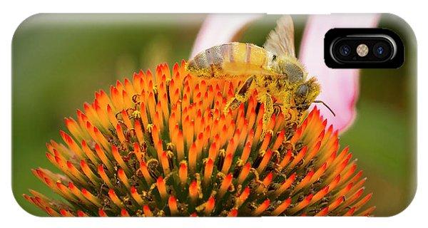Honeybee iPhone X Case - Healthy Echinacea by Jean NorenB