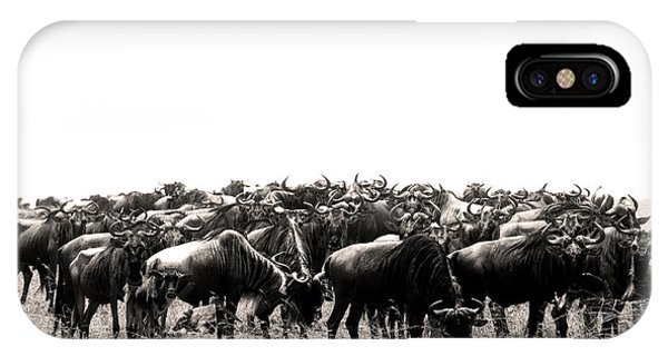 Herd Of Wildebeestes IPhone Case