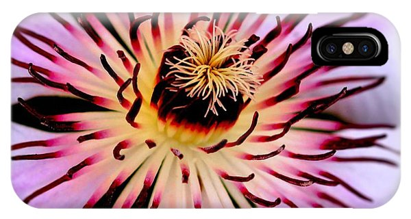 Heart Of A Clematis IPhone Case