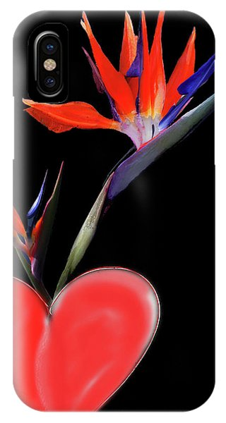 Heart  Of Paradise IPhone Case