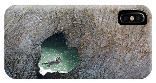 Heart Rock Otter IPhone Case