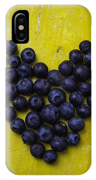 Blue Berry iPhone Case - Heart Shaped Blueberries by Garry Gay