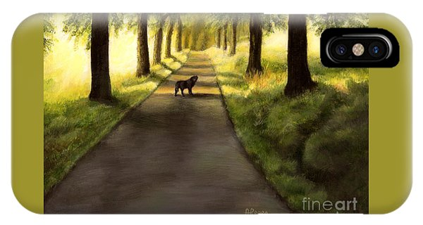 Serenity - Walk With Black Labrador IPhone Case