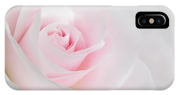Cosmetic iPhone Case - Heaven's Light Pink Rose Flower by Jennie Marie Schell