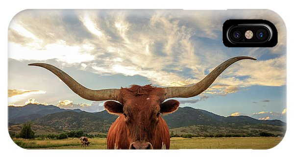 Heber Longhorn Sunset IPhone Case