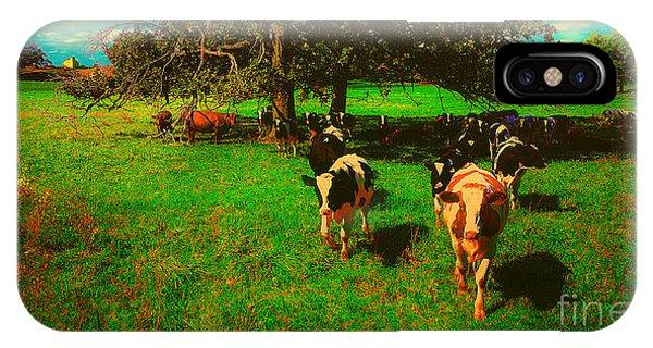 Hebron Il Cows Pasture IPhone Case