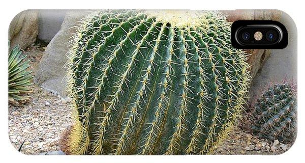 Hedgehog Cactus IPhone Case