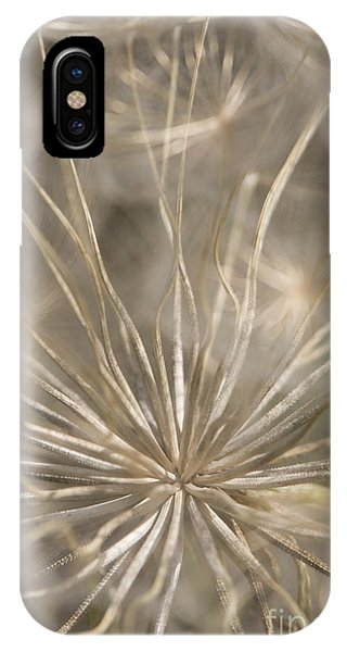 Close Focus Floral iPhone Case - Held In Place by Anne Gilbert