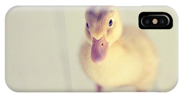 Cute Bird iPhone Case - Hello Ducky by Amy Tyler