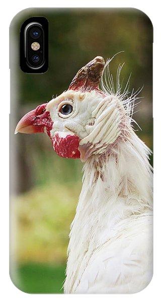 Hello Neighbor IPhone Case