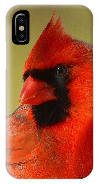 Hello Red IPhone Case