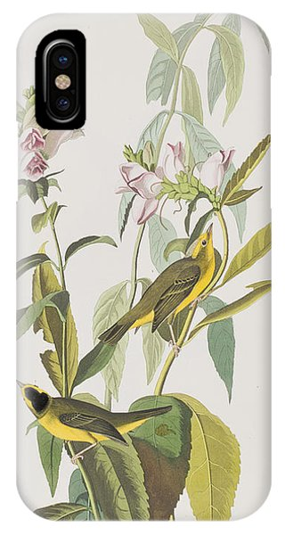 Warbler iPhone Case - Hemlock Warbler by John James Audubon