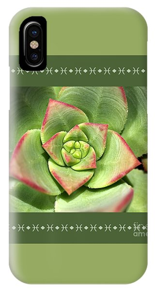 Hens And Chicks Succulent And Design IPhone Case