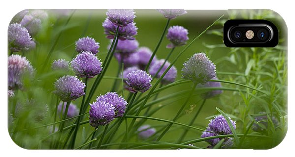 Herb Garden. IPhone Case